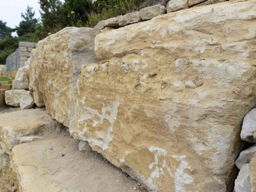Apa Itu Limestone dan Jenis-Jenisnya